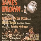 Indomitable: James Brown at SummerStage
