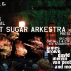 Burnt Sugar with Vernon Reid & Melvin VanPeebles Rocks Bryant Park!