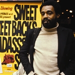 Sweet Sweetback's Badasssss Song / Melvin Van Peebles & the Burnt Sugar Arkestra
